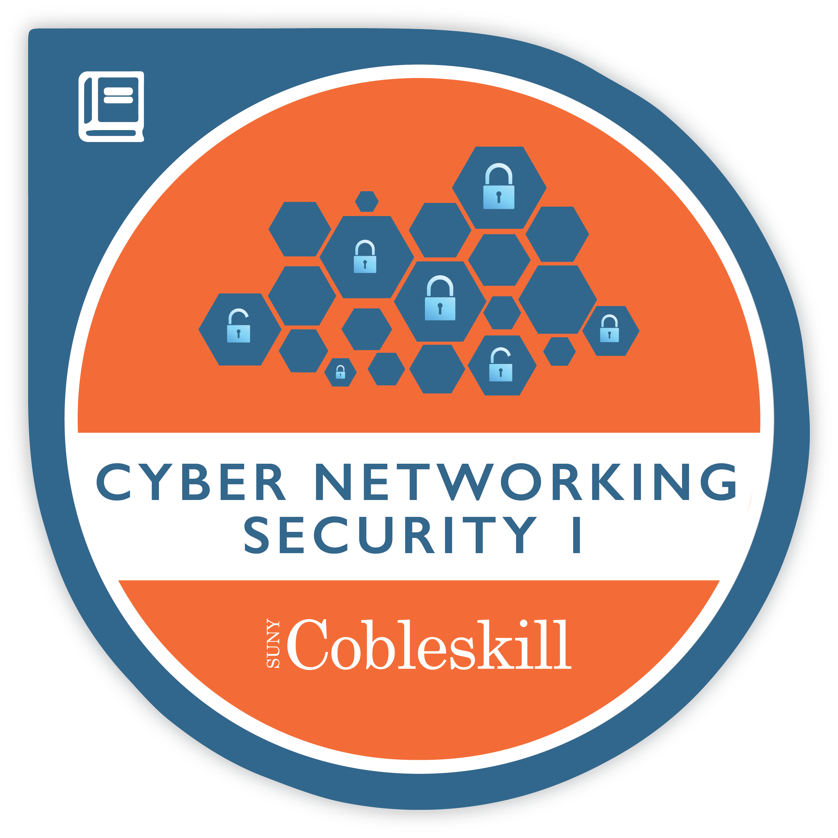 Cyber Networking Security badge